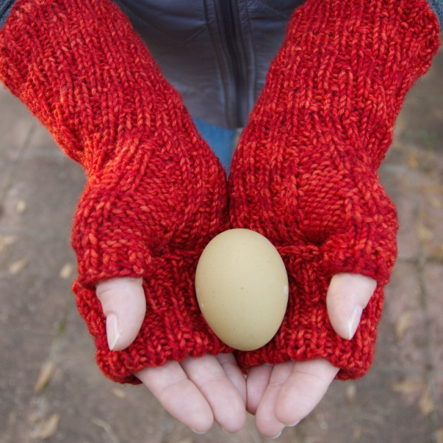 I Can't Control My Fingers fingerless mitts by Barbara Benson